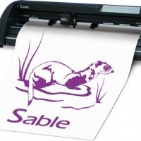 sable (1)